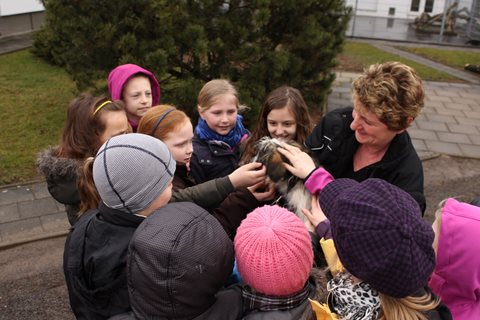 Schüler im Magdeburger Tierheim