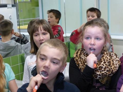 Alle Kinder putzen gründlich