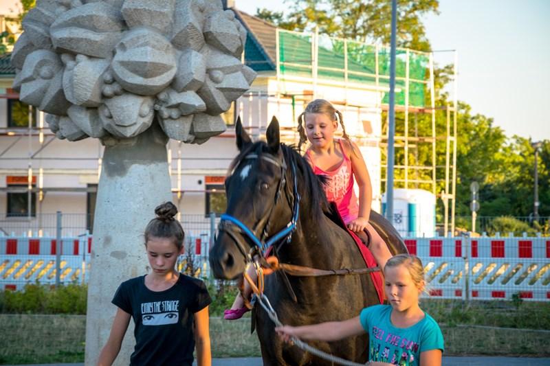 Lesenacht mit Pferd (1)