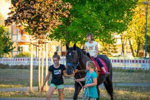 Lesenacht mit Pferd (6)